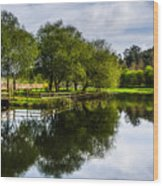 Picnic Area In The Marnel River IIi Wood Print