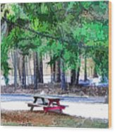 Picnic Area With Wooden Tables 3 Wood Print