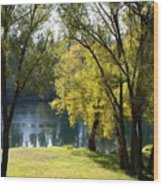 Picnic Spot On Spokane River Wood Print