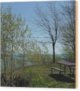 Picnic Table By The Lake Photo Wood Print