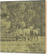 Picture Of Amish Boy In Book Wood Print