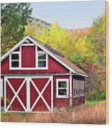 Picturesque Wood Print by Betty LaRue