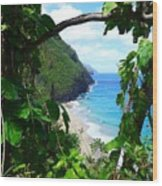 Picturesque Hawaii  Wood Print