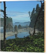 Picturesque Ruby Beach View Wood Print