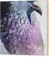 Pidgeon Wood Print