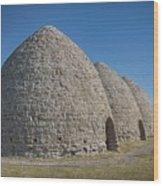 Piedmont Kilns Wood Print