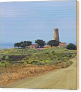 Piedras Blancas Historic Light Station - Outstanding Natural Area Central California Wood Print
