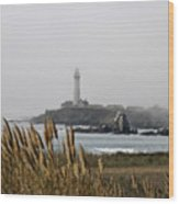Piegeon Point Lighthouse Wood Print