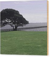 Pier And Tree By The River Wood Print
