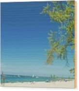 Pier Marquette Wood Print