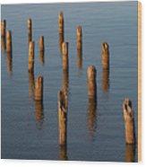 Pier Posts Wood Print