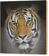 Piercing Wood Print