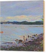 Piermont Shore Ny Wood Print