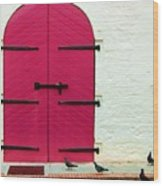 Pigeon Pink Wood Print