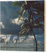 Pigeon Point On Tobago Wood Print