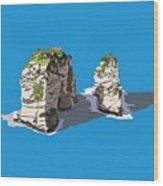 Pigeon Rocks, Beirut Wood Print