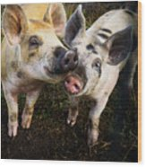Piggy Love Wood Print