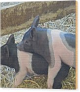 Piggyback Wood Print