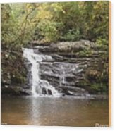 Pigpen Falls Oconee County Sc Wood Print by Lane Owen