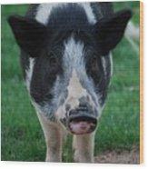 Pigs Ears Wood Print