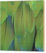 Piha Oe I Ka Maikai Wood Print
