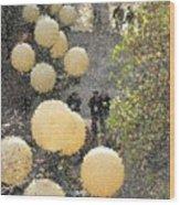 Pike Hillclimb Wood Print