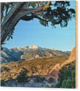 Pikes Peak From Ridge Trail Wood Print