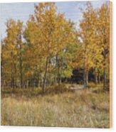 Pikes Peak Splendor Wood Print