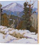 Pikes Peak Winter View Wood Print