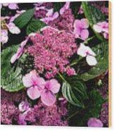 Pile Of Purple Wood Print
