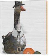 Pilgrim Goose Wood Print