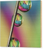 Pin Drop Wood Print