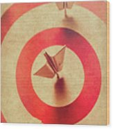Pin Plane Darts Hitting Goals Wood Print