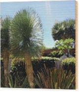 Pinball Plants, Long-pin Plants Wood Print