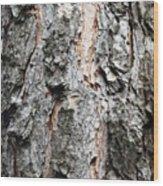 Pine Bark Wood Print