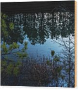 Pine Barren Reflections Wood Print