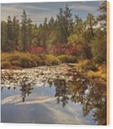 Pine Barrens New Jersey Whitesbog Nj Wood Print
