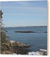 Pine Coast Wood Print