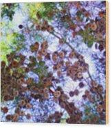 Pine Cone Heaven Wood Print