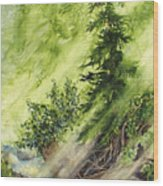 Pine Creek Wood Print