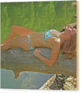 Pine Creek Summer Afternoon Wood Print