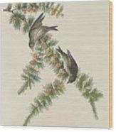 Pine Finch Wood Print