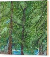 Pine Haven Wood Print
