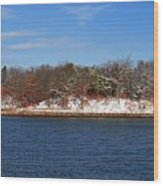Pine Island In The Snow Wood Print