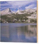 Pine Lake Wood Print