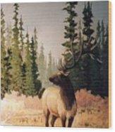Pine Meadow Elk Wood Print