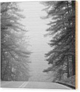 Pine Mist Wood Print