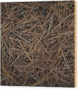 Pine Needles On Forest Floor Wood Print