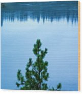 Pine On The River Wood Print