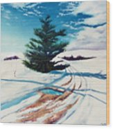 Pine Tree Along The Country Road Wood Print